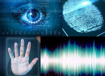 Evaluating Biometrics VoiceVantage